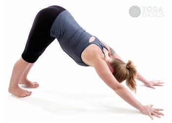 adho mukha shvanasana • Downward Facing Dog