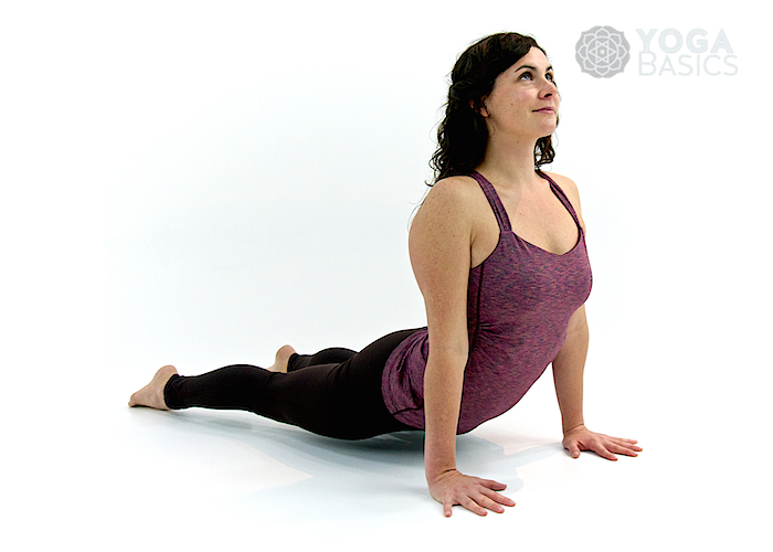Upward Facing Dog Pose • urdhva mukha svanasana
