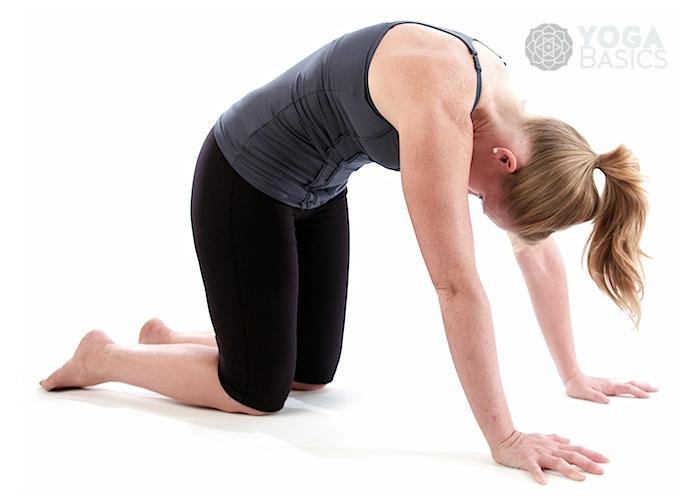 Cat Tilt yoga pose