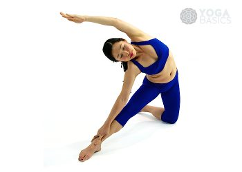 Gate Pose • parighasana
